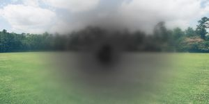 Photographic artist's impression of a central blind spot and surrounding blurriness as seen over an image of a green field and forest.