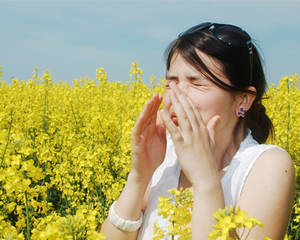 Woman sneezing in field of yellow flowers.