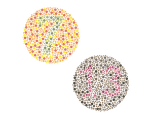 Ishihara test image color vision