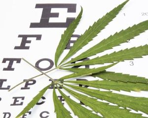 Marijuana leaf laying on an eye chart