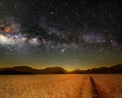 Night sky over a wheat field
