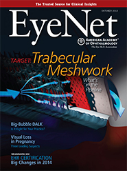 October 2013 EyeNet Cover