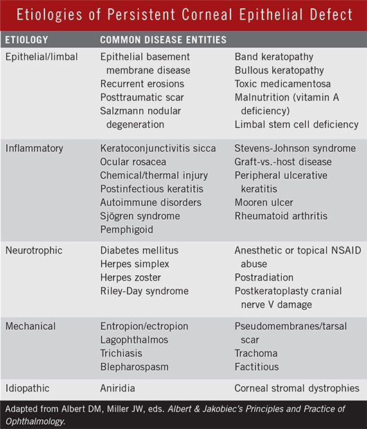 Etiologies of Persistent Corneal Epithelial Defect