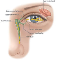 What Is A Blocked Tear Duct American Academy Of
