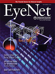 September 2013 EyeNet Cover