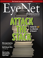 April 2013 EyeNet Cover